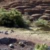 Exemples de pigments visibles juste au nord de la Croix de Fer